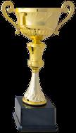 Sportovní poháry, trofeje, medaile, diplomy